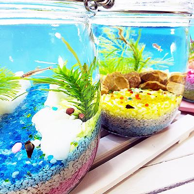 グッドアクアリウムデザイン賞小さな水族館を作ろう!【ボトリウム®】